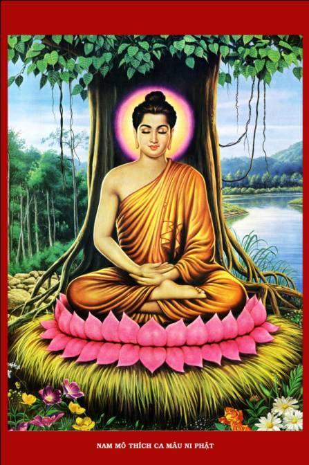 Жизнь будды. учение будды шакьямуни - портал обучения и саморазвития
