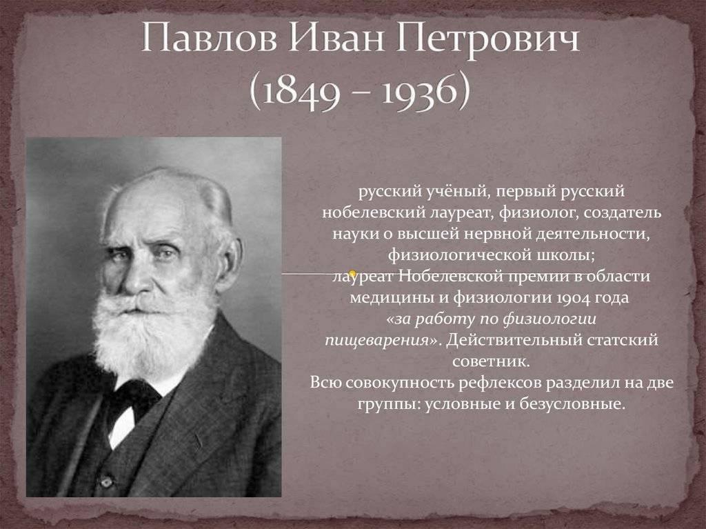 Иван петрович павлов: краткая биография и вклад в науку :: syl.ru