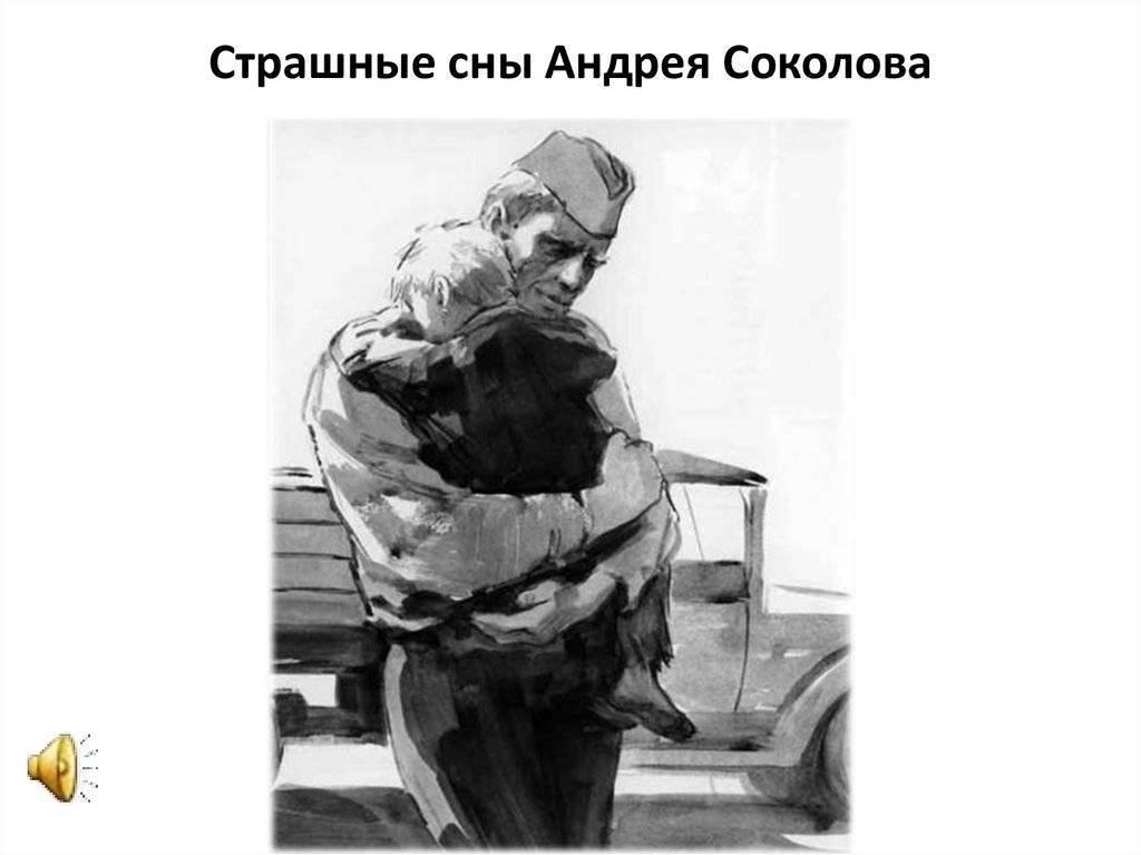 Мария соколова – биография, фото, личная жизнь, новости, фитнес 2021 - 24сми