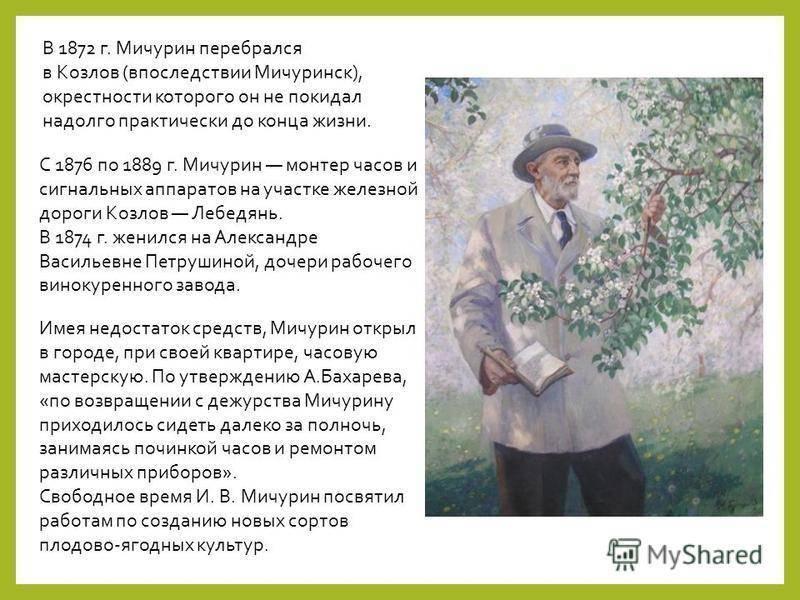 Мичурин иван владимирович   плодовый сад