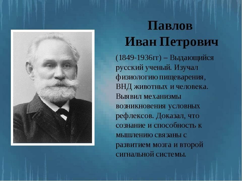 Академик павлов: сентиментальный вивисектор | милосердие.ru