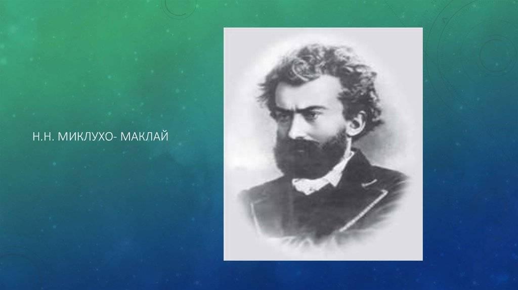 Великие имена новгородской области — миклухо-маклай николай николаевич