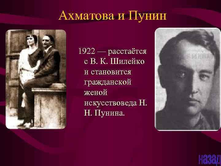 Биография Владимира Шилейко
