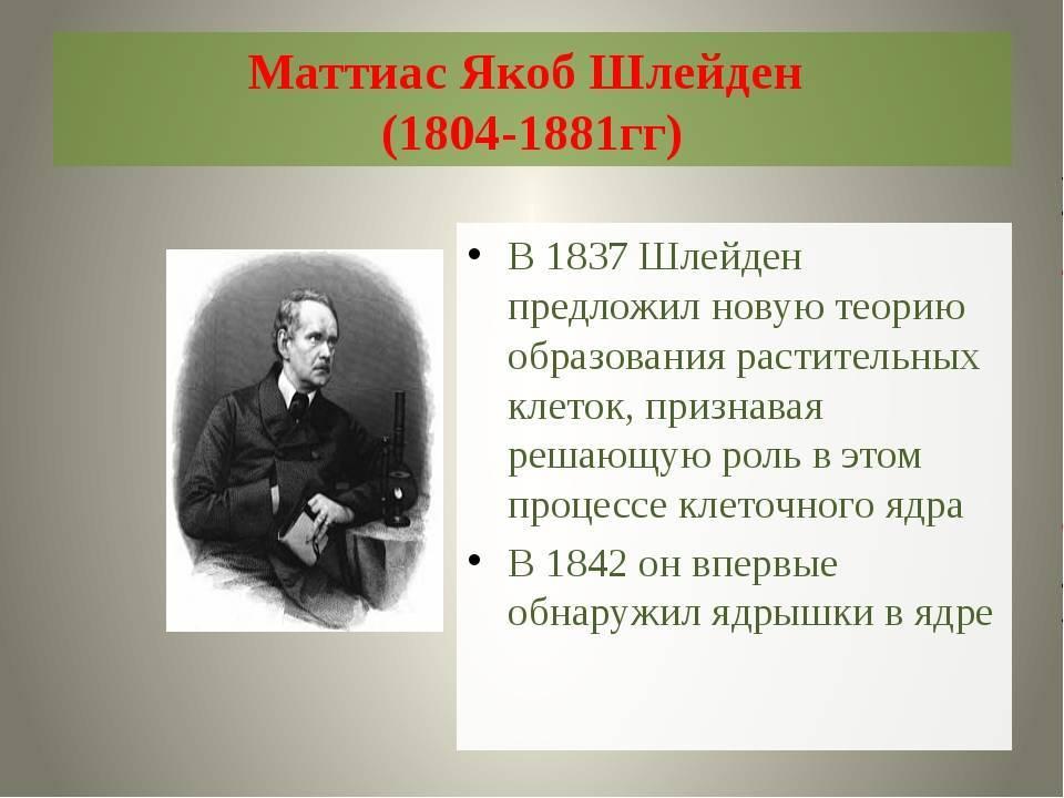 Шлейден и шванн: клеточная теория. маттиас шлейден. теодор шванн :: syl.ru