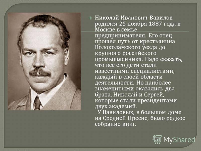 Биография Николая Вавилова