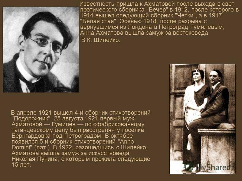 Владимир шилейко