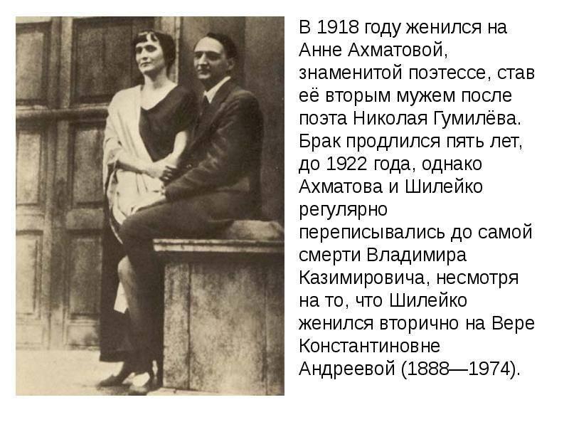 Владимир казимирович шилейко: биография