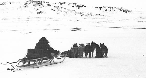 Экспедиция брусилова 1912 года на святой анне - находки, судьба, исчезновение   что названо в честь георгия брусилова и его экспедиции