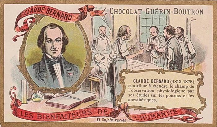 Бернар, клод — википедия. что такое бернар, клод