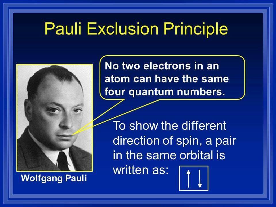 Паули, вольфганг биография, научные достижения, личные качества