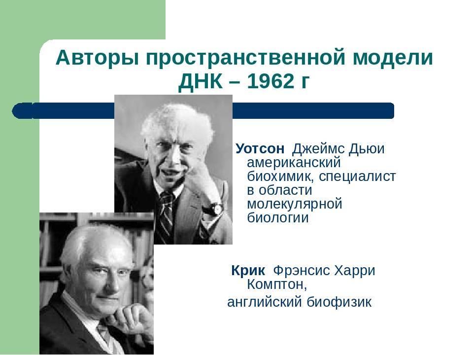 Основные генетические понятия. закономерности наследственности. генетика человека.   егэ по биологии