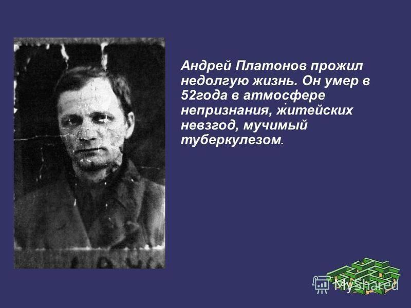 Биография Юрия Платонова