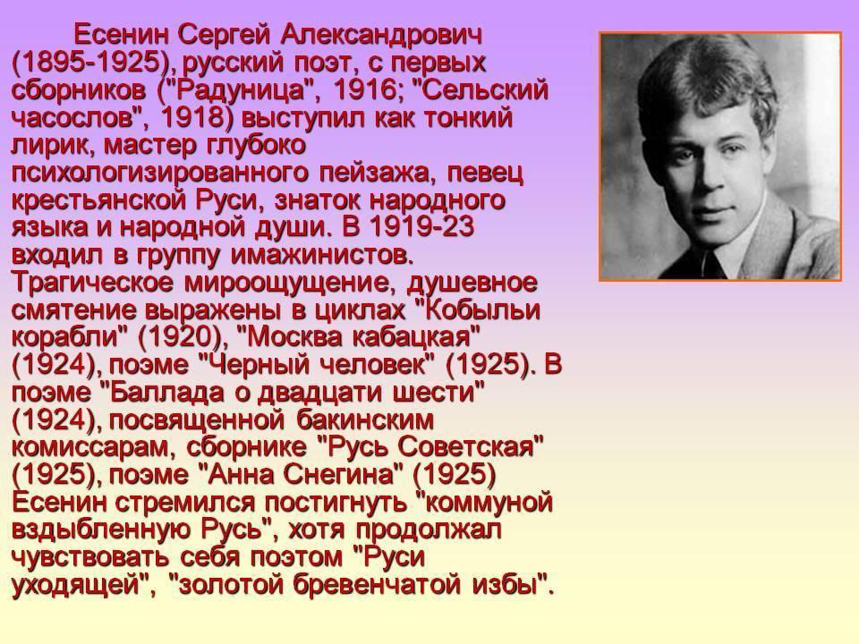 Сергей есенин - биография, фото, женщины, стихи и последние новости - 24сми
