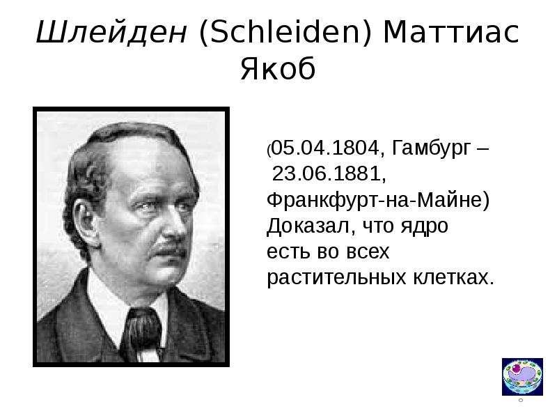 Шлейден, маттиас — википедия