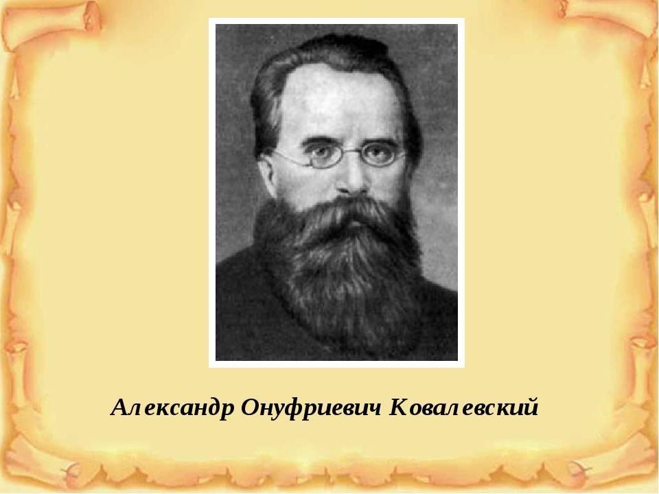 Александр онуфриевич ковалевский википедия