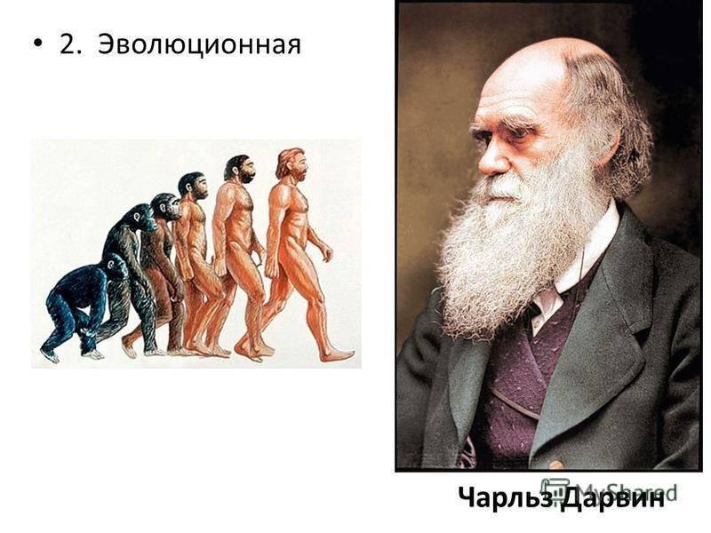 Произошедшие от обезьян: биография ученого и биолога чарльза дарвина