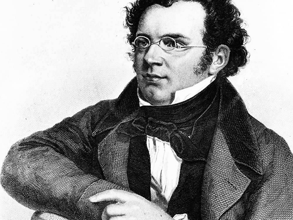 Франц шуберт биография, краткое содержание и самое важное, интересные факты о композиторе