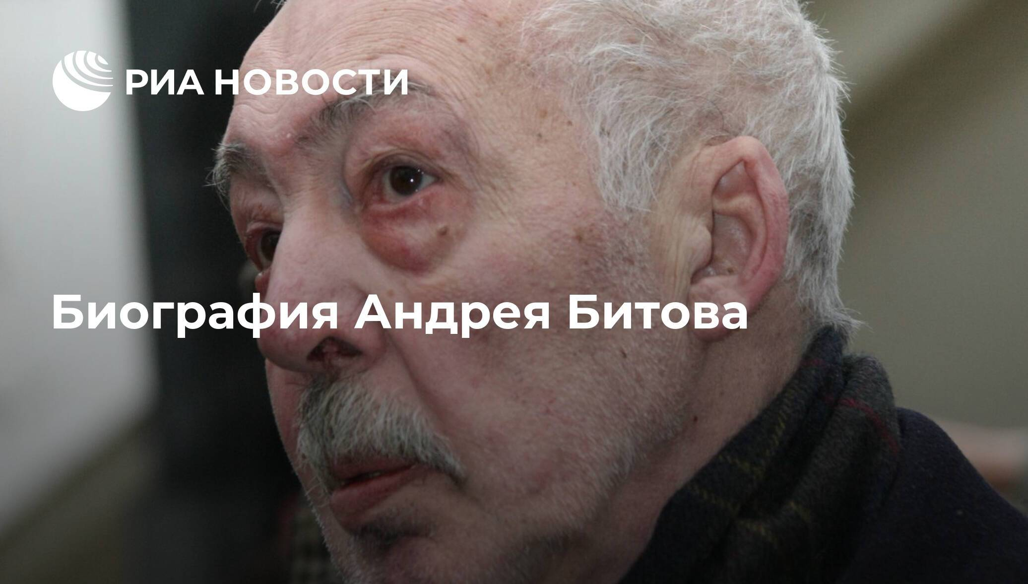 Жизнь и творчество писателя андрея битова. реферат. литература. 2013-04-28