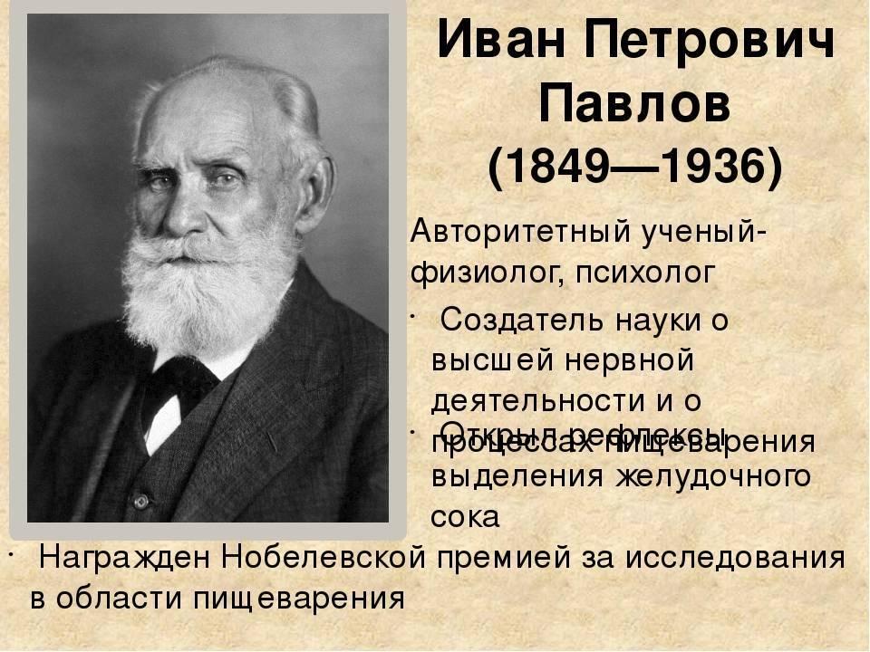 Павлов иван петрович — краткая биография | краткие биографии
