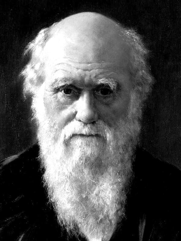 Чарльз дарвин – биография, фото, личная жизнь, теория происхождения видов, эволюция - 24сми