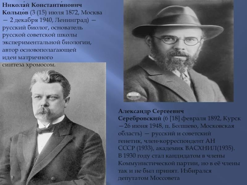 Кольцов, николай константинович — вики