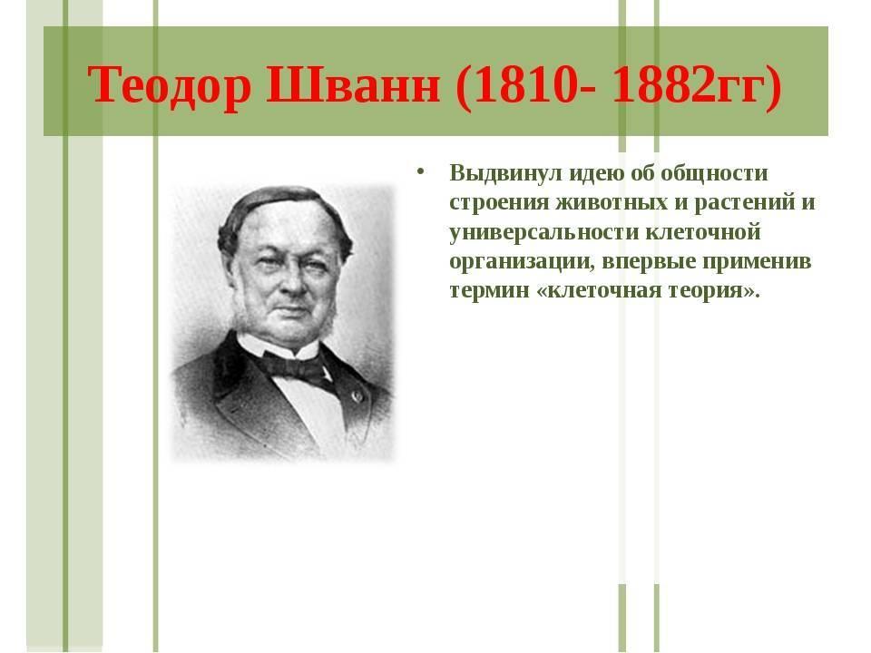 Wikizero - шванн, теодор