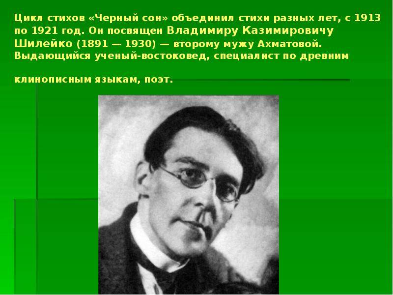 Владимир казимирович шилейко, второй муж. ахматова без глянца
