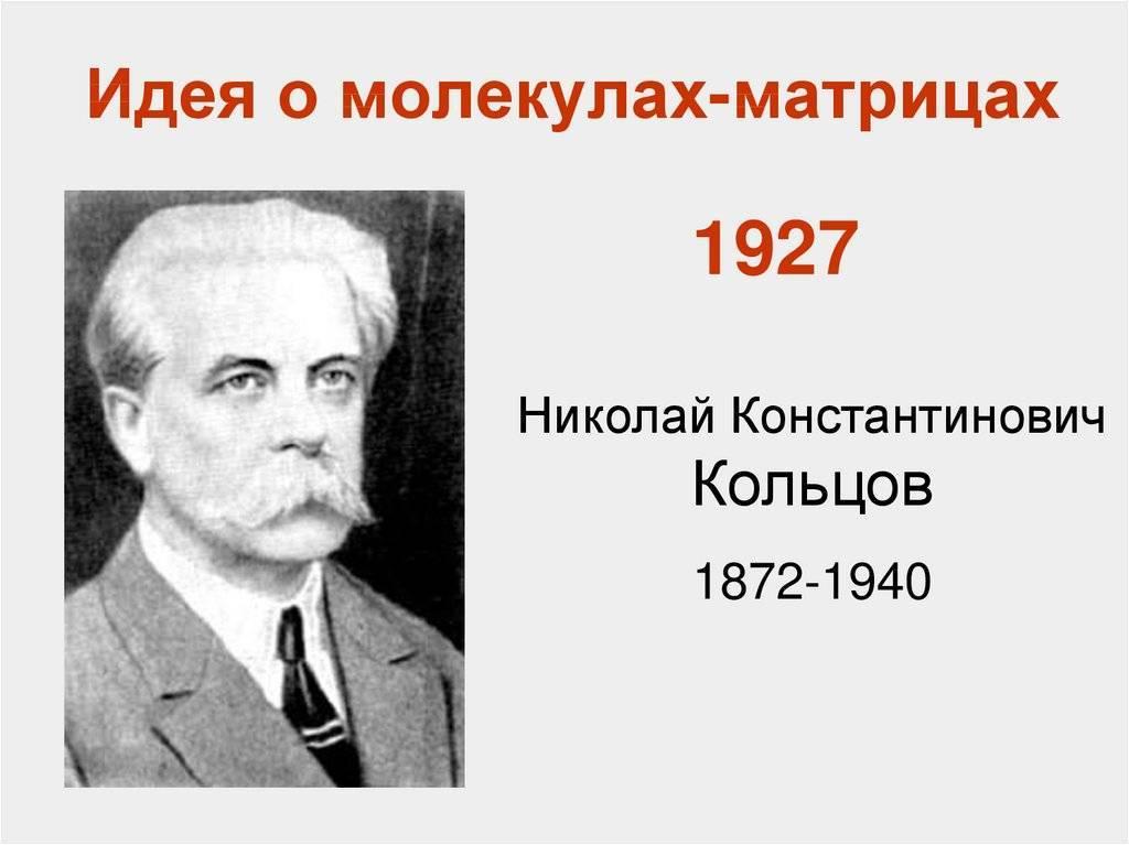 Кольцов николай константинович — краткие биографии