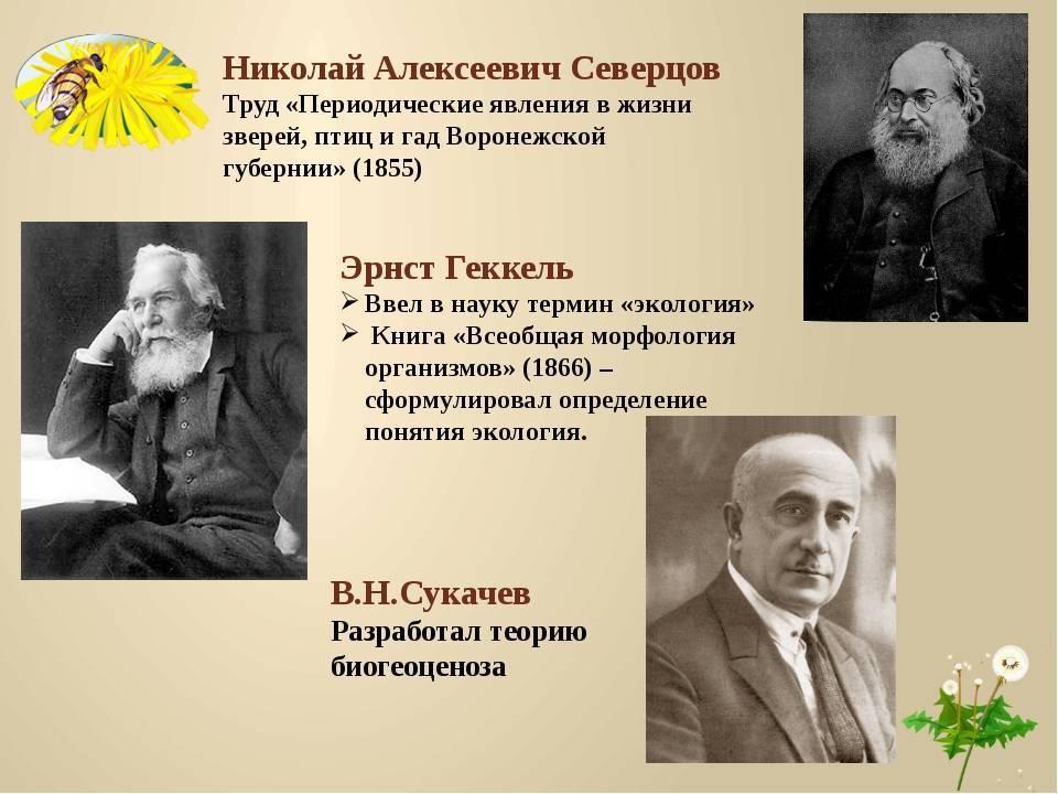 Северцов, николай алексеевич — википедия
