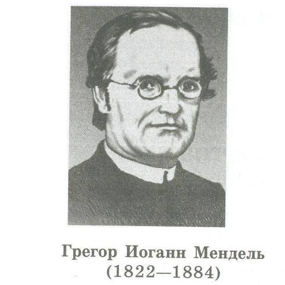 Мендель, грегор иоганн