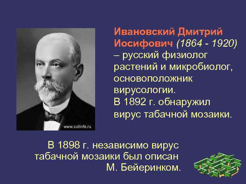 Ивановский, дмитрий иосифович — википедия. что такое ивановский, дмитрий иосифович