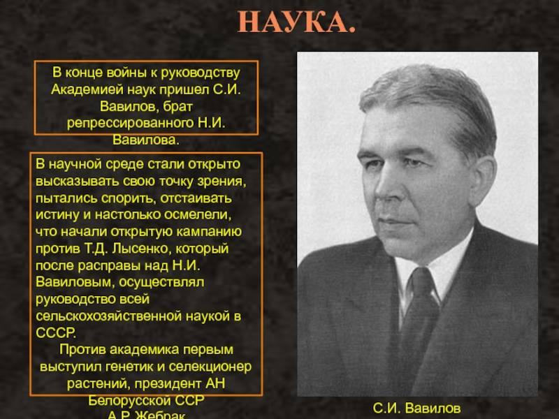Николай вавилов – биография, фото, личная жизнь, вклад в науку - 24сми