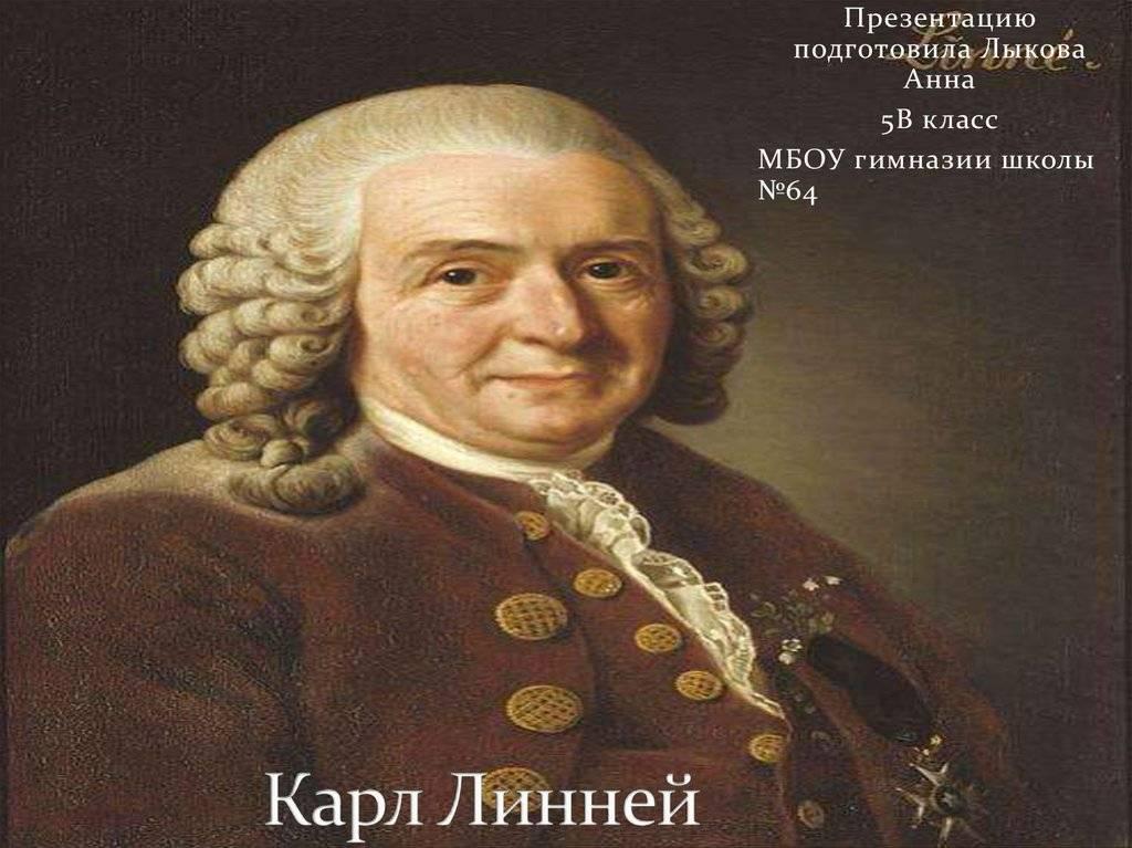Карл линней - биография, наука, личная жизнь, труды | биографии