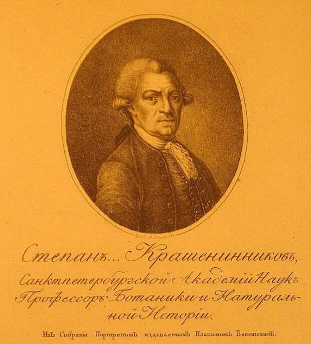 Степан крашенинников - вики