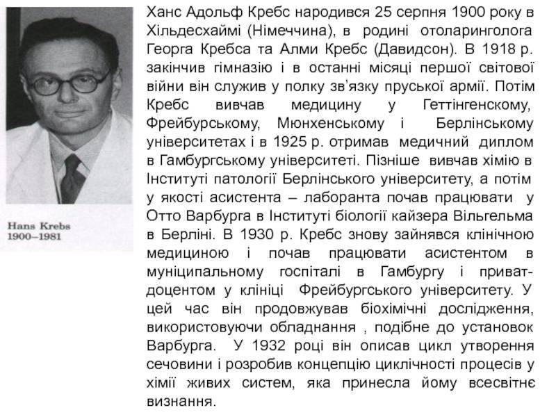 Кребс, ханс адольф — википедия