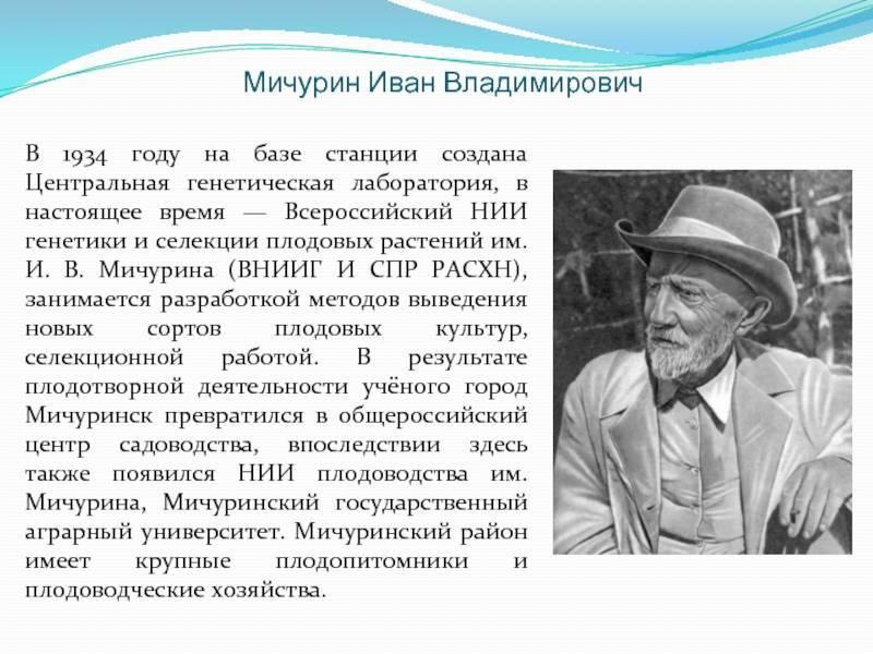 Иван владимирович мичурин — краткая биография