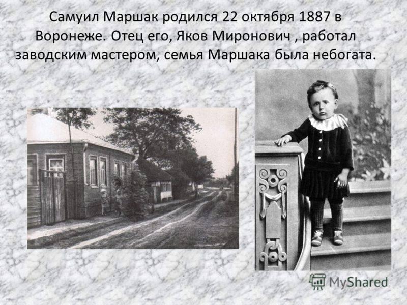 Маршак самуил яковлевич — краткая биография
