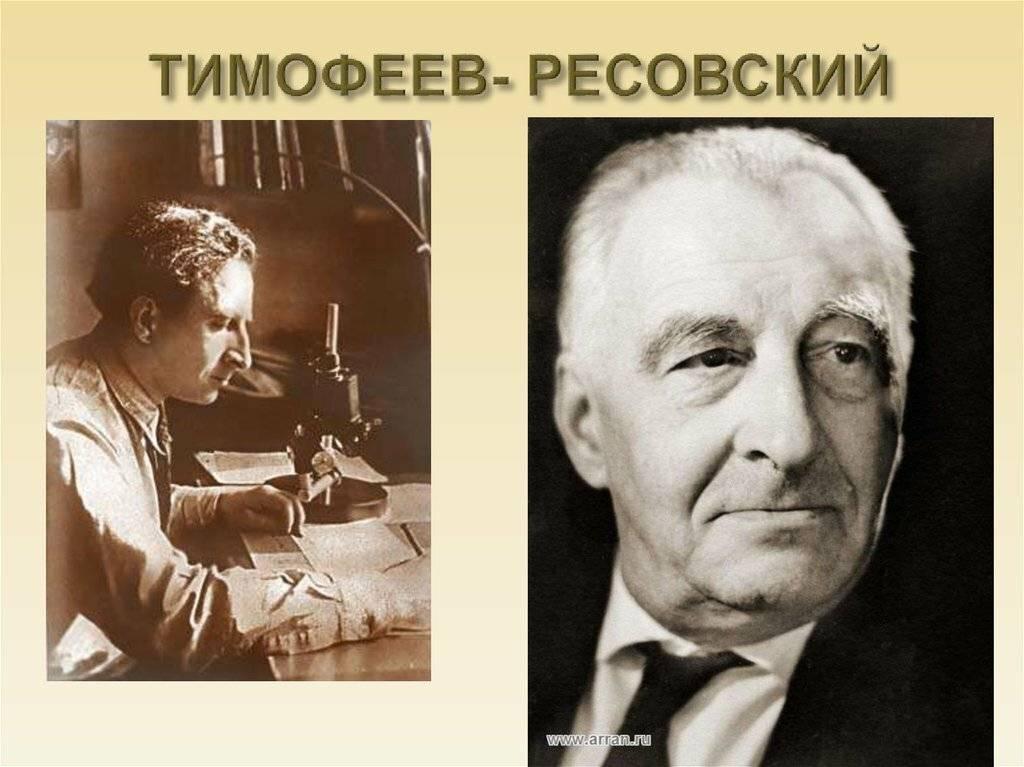 Тимофеев-ресовский, николай владимирович биография, происхождение и годы молодости, учёба, начало самостоятельной жизни
