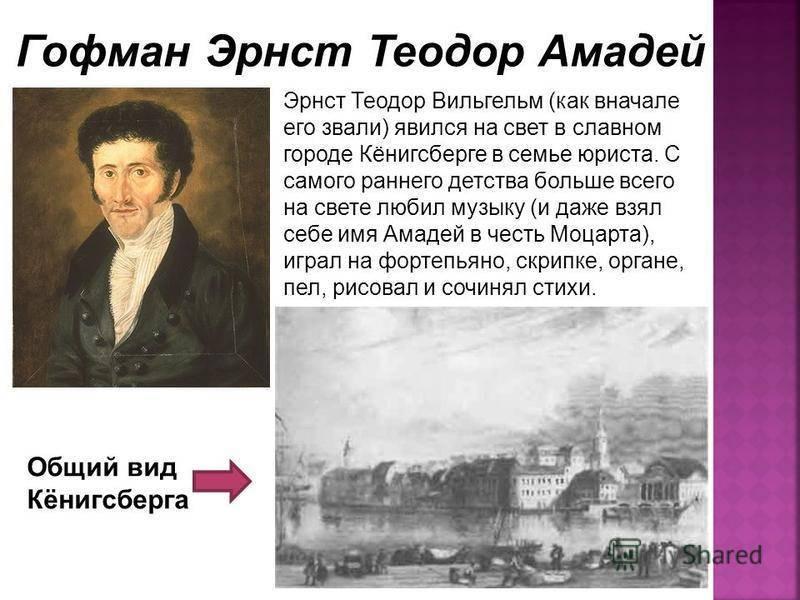 Эрнст теодор амадей гофман: биография, личная жизнь, творчество