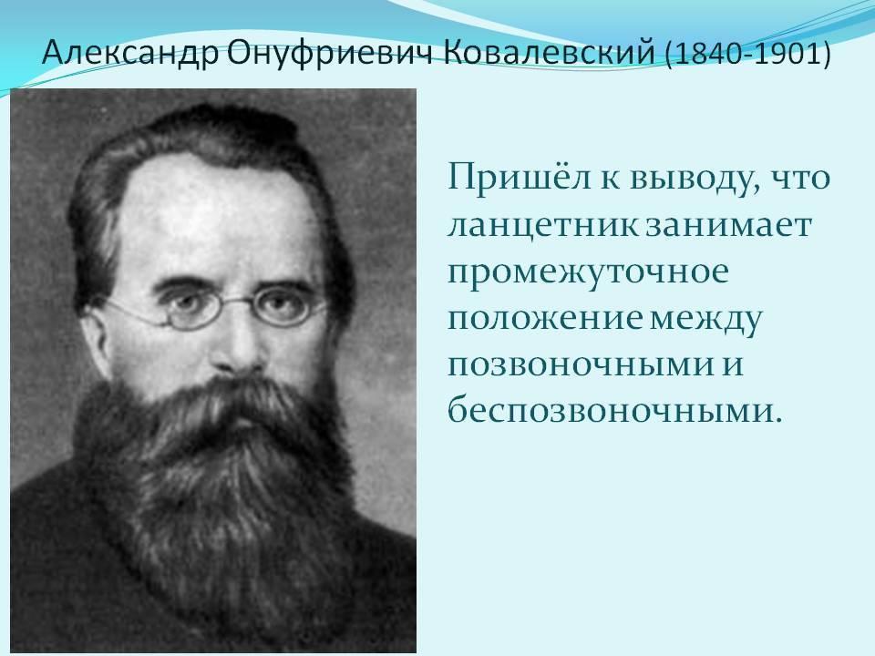 Ковалевский, егор петрович