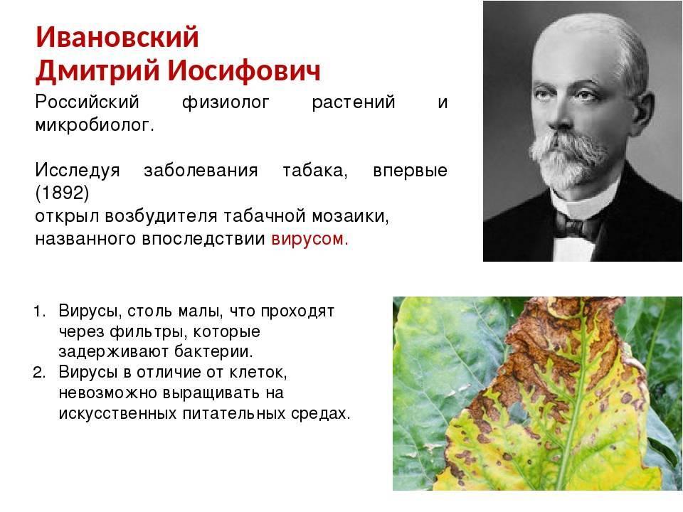 Ивановский, димитрий иосифович википедия