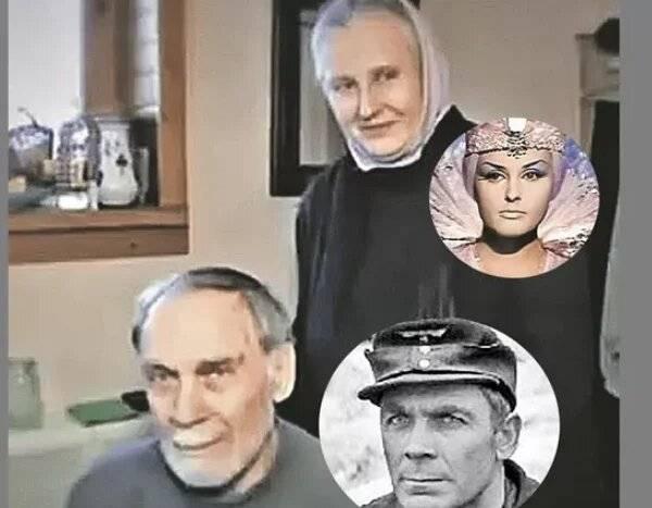 Владимир заманский: биография, личная жизнь, фильмы / актеры