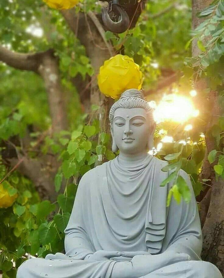 Мир культуры » будда шакьямуни