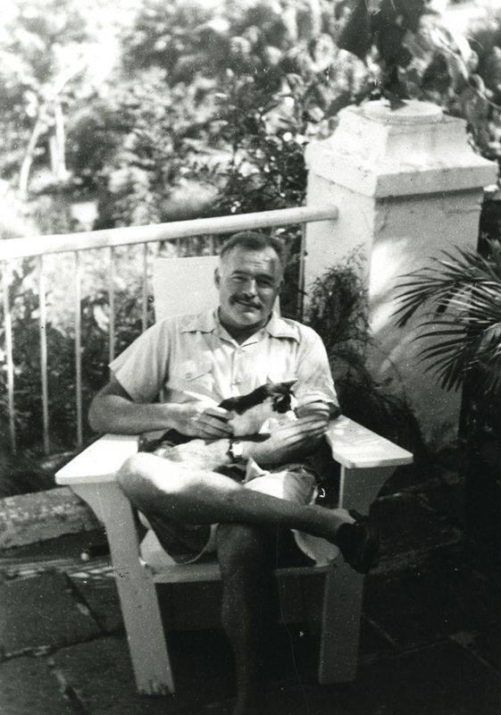 Эрнест хемингуэй - биография, личная жизнь, фото