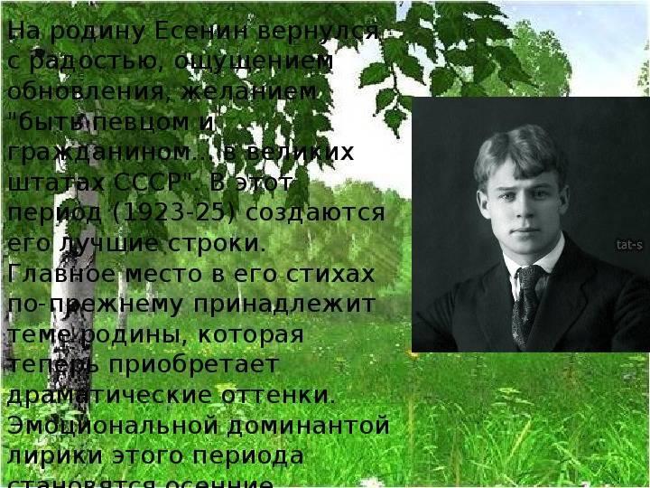 Краткая биография есенина, интересные для детей факты жизни и творчества сергея есенина для всех классов