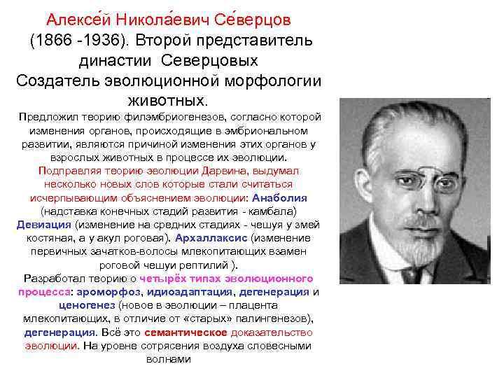 Северцов, николай алексеевич