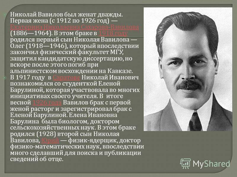 Биография Олега Вавилова