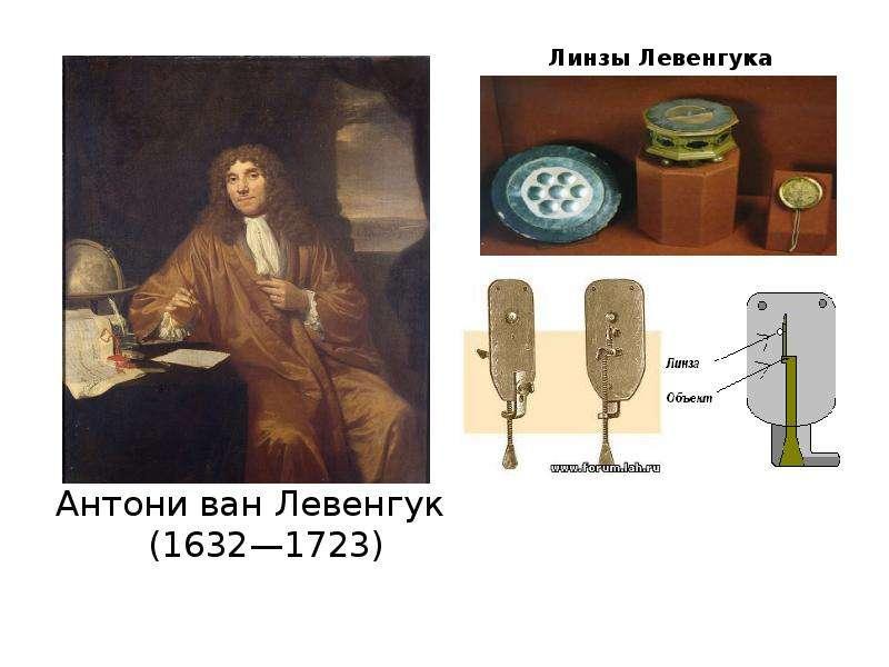 Микроскоп левенгука. первый микроскоп. антони ван левенгук открытия и вклад в биологию - новая медицина