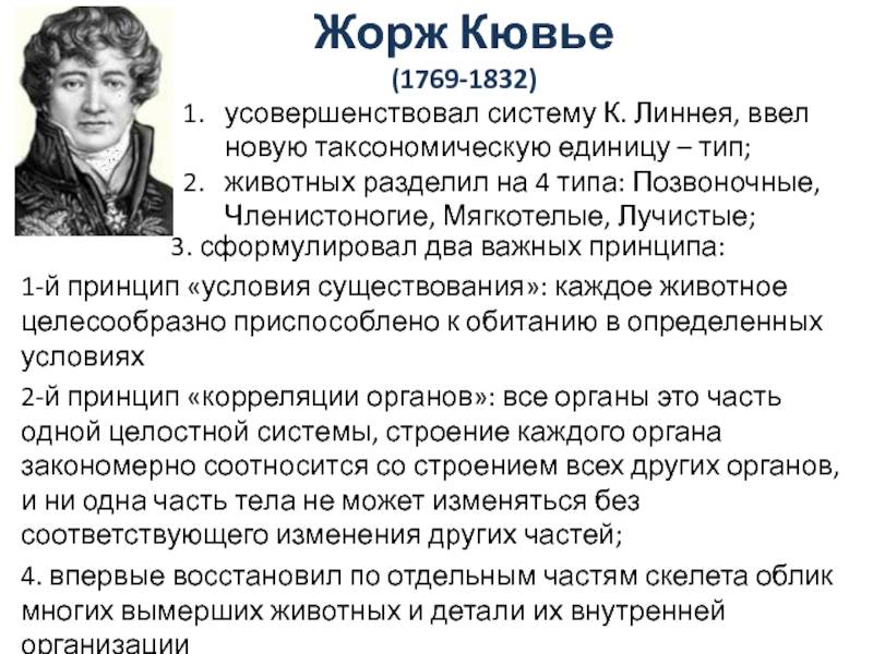 Wikizero - кювье, жорж леопольд