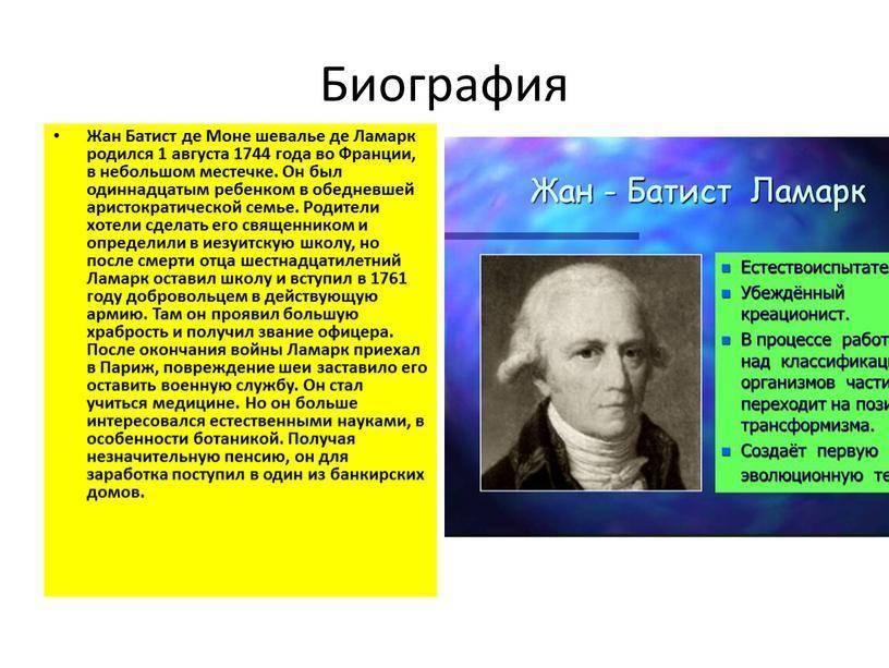 Теория ламарка и постулаты эволюции / биология   thpanorama - сделайте себя лучше уже сегодня!
